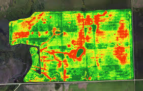 Quantifying Crop Trends with Drones and Accurate NDVI Mapping